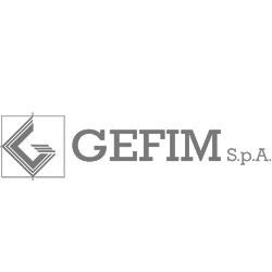 Gefim_ok